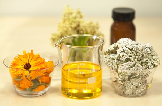 Essential Oils- New Directions aromatics