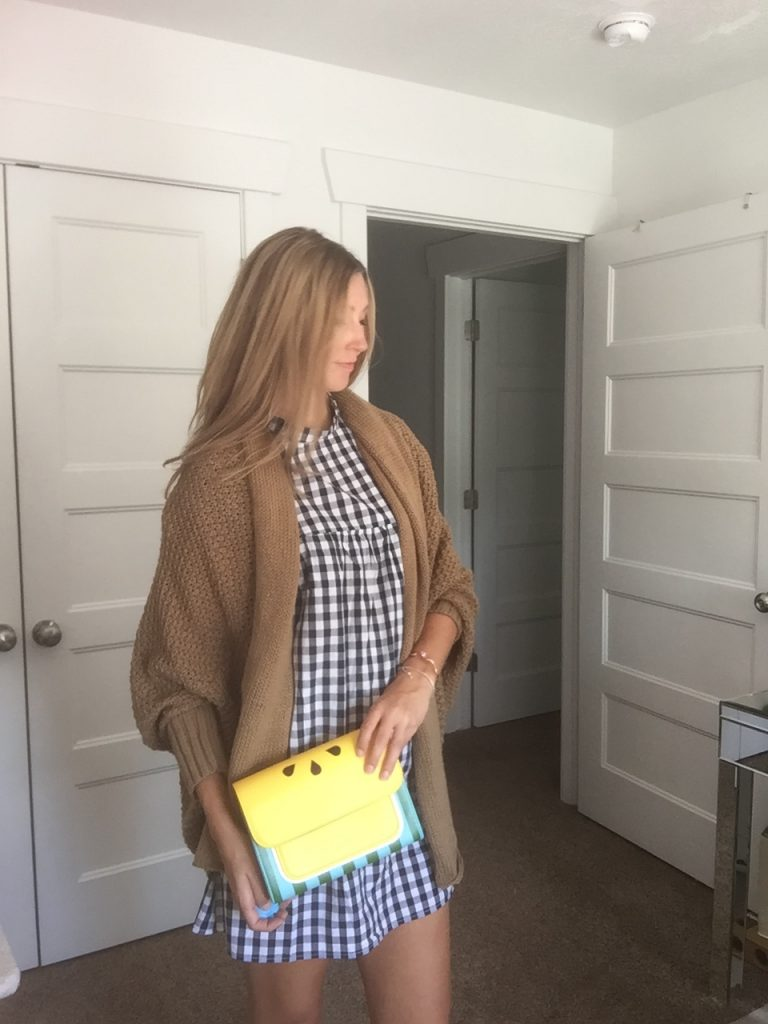 Check Dress, Tan Cardigan, & Yellow Lemon Handbag