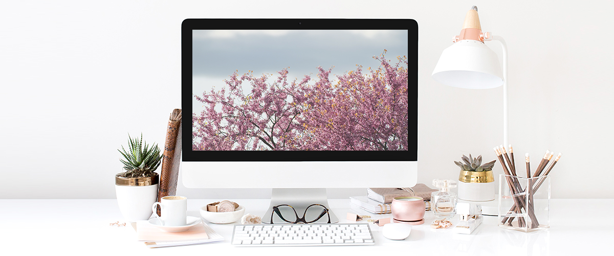 rose gold desktop2